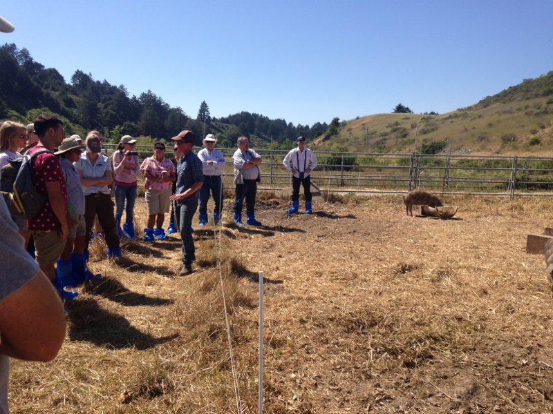 These workshop participants are learning about how to maintain an ecofriendly pastured pork operation!